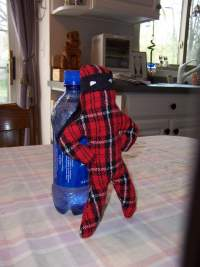 [Tiny Plaid Plush 2]